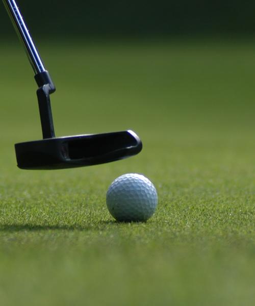 Golf | Rain Farm